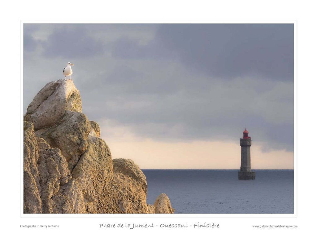 poster-30x40-OUESSANT-JUMENT.jpg